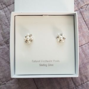 Jewelry - ⭐HP⭐NWT * Cultured * Freshwater * Pearl * Earrings